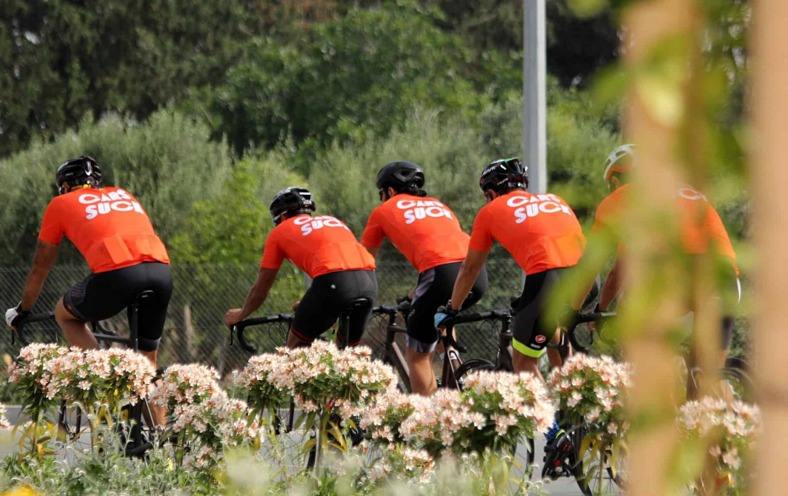 Aspire Cycling Cyprus 1